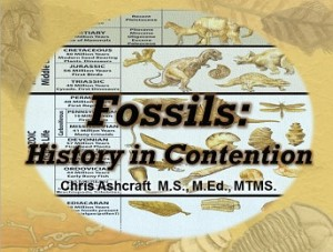 fossils_and_the_flood